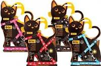 "DINGO Komplektas ""KICIO"" diržas ir pavadėlis mažoms katėms"